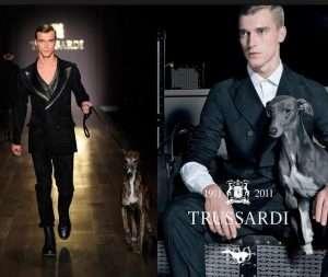 История парфюмерного бренда Trussardi 2
