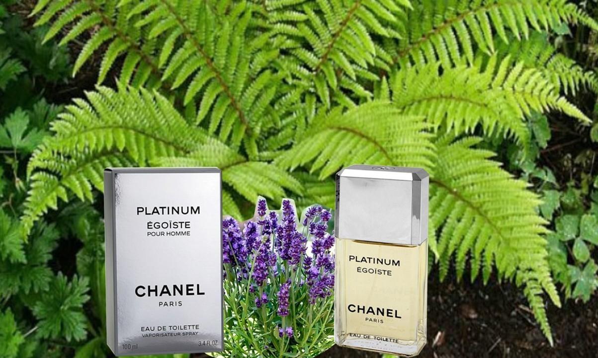 Уникальная туалетная вода от Шанель Платинум Эгоист